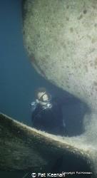 Royal Australian Navy (RAN) Clearance Diver carrying out ... by Pat Keenan