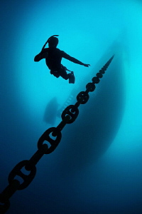 Free diver by Paul Colley