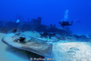 Mexico - Isla Mujeres - Canonero 55 Wreck by Mathias Weck