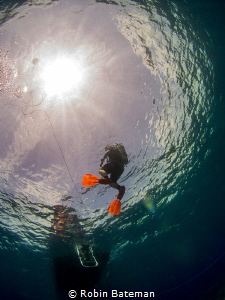 Hang Time  Safety Stop in Grand Cayman by Robin Bateman