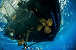 As a diver i hate it that fish can stay down and i have t... by Simon Dyer