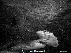 Shot with OMD-1 7-14 Zuiko wide angle, Nauticam housing, ... by Brian Burnett