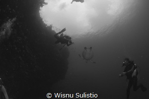 Turtle shoot at Bunaken by Wisnu Sulistio