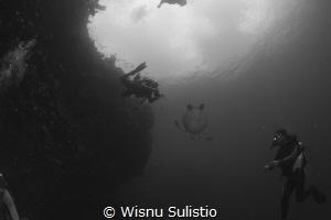 Turtle shoot at Bunaken by Wisnu Sulistio