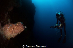 Looking at nature looking at you / Diver watches nature t... by James Deverich