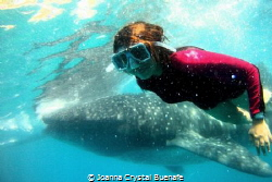 Say cheese!! gentle giant learn to do his selfie shot by Joanna Crystal Buenafe