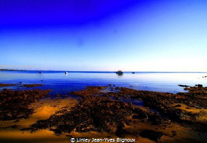 Roches Noires-NW Mauritius Linley Jean-Yves Bignoux by Linley Jean-Yves Bignoux