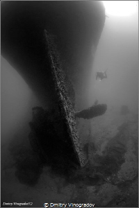Red Sea. Egypt. The Gulf of Suez. Shipwreck SS Turkia. Su... by Dmitry Vinogradov
