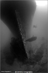 Red Sea. Egypt. The Gulf of Suez. Shipwreck SS Turkia. Su... by Dmitry Vinogradov