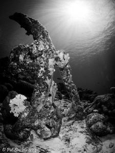 Beautiful Anchor on the top of Rock Pile Reef. by Patricia Sinclair