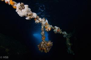 The rope in the cave. by Mehmet Salih Bilal