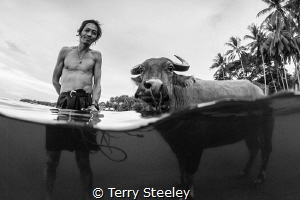 'Farmer and bull'. Dumaguete, Philippines. — Subal unde... by Terry Steeley