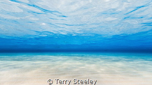 'You can shake the sand from your shoes, but not your soul!' by Terry Steeley