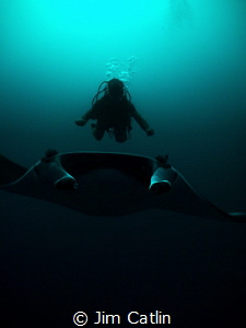 'The Manta Whisperer' - Antoine hovers over this Manta Ra... by Jim Catlin