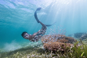 Ai Futaki at Wakatobi