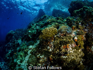Home from Home ... Sail Rock, Thailand-EM5-Panasonic 8mm-... by Stefan Follows