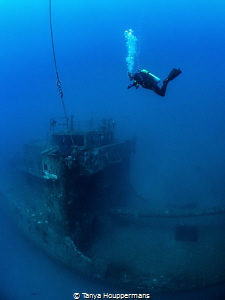 Freefall A diver descends to the wreck of the USCGC Spar... by Tanya Houppermans