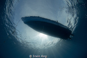 Happy World Oceans Day by Irwin Ang