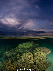 Reef at sunset in Moalboal by Henley Spiers