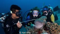 Finding Nemo @ Mataking Island, Malaysia. by Hon Ping