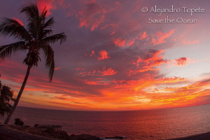 Sunset in Fire, Acapulco Mexico by Alejandro Topete