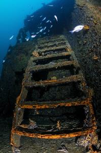 ~ Climb the Ladder ~ by Geo Cloete