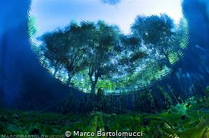 Posta Fibreno Lake - Itally by Marco Bartolomucci