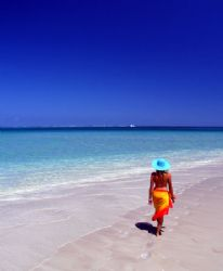 Coral Bay, Ningaloo Reef. by Penny Murphy