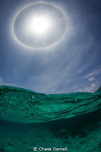 """Sunbow""