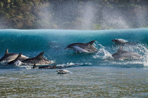 ~ Break on Through to the Other Side ~ by Geo Cloete