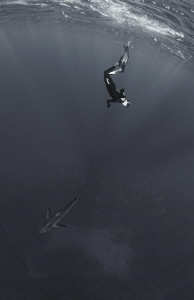 The photo captured the moment of the freediver's immersio... by Dmitry Starostenkov