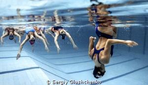 Synchronized swimming by Sergiy Glushchenko