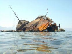 Wreck of the Maria Schroeder in Nabq Park, Sinai, taken w... by Nikki Van Veelen