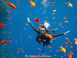 Happiness of diving, Canon G12, Internal flash by Dragos Dumitrescu