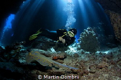 Dive in a fantastic cave system called Claudia in the Fur... by Martin Gombrii