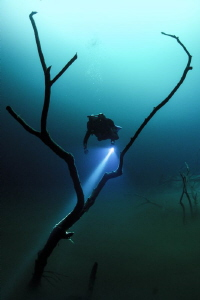 Diver explores Angelita Cenote. by Spencer Burrows
