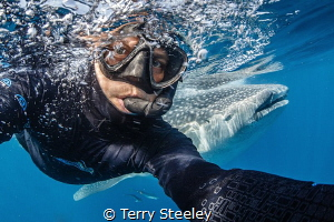 Extreme photo bomb — Subal underwater housing, Canon 1D... by Terry Steeley