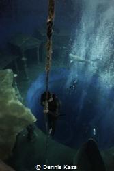 Freediving Photo was taken on an Freediving Training. Pl... by Dennis Kasa
