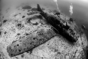 Cessna airplane (artificial reef, Moalboal) by Mathieu Foulquié