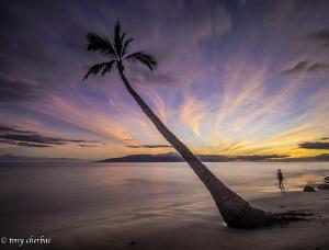 Lahaina Makai by Tony Cherbas