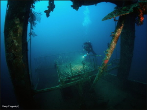 Trawler Mohamed Hasabella. Egypt, Hurgada.  30 meters deep. by Dmitry Vinogradov