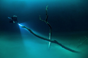 Angelita Cenote by Spencer Burrows