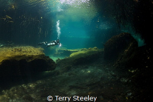 'Journey into the unknown' — Subal underwater housing, C... by Terry Steeley