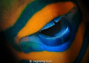 Mouth of Parrotfish by Jagwang Koo