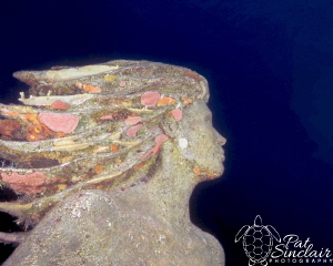 The statue is Amphritite - Siren of Sunset Reef  I shot t... by Patricia Sinclair