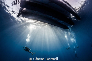 """""""Light Show""""  Safety stop greatness to finish off the dive. by Chase Darnell"""