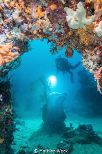 Coral arch with diver by Mathias Weck