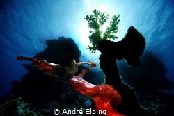 Model: Shammadina, Canon 5D, Sigma 12 mm, Hugyfot, Sataya... by André Elbing