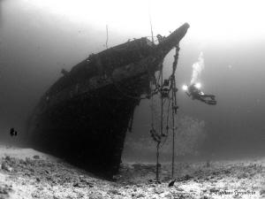 Carthaginian wreck, Lahaina, Maui by Stéphane Primatesta