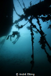 Wreck Balinea in shallow water and somehow very bad visib... by André Elbing